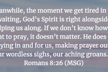 Daily Bible Verse and Devotion – Romans 8:26