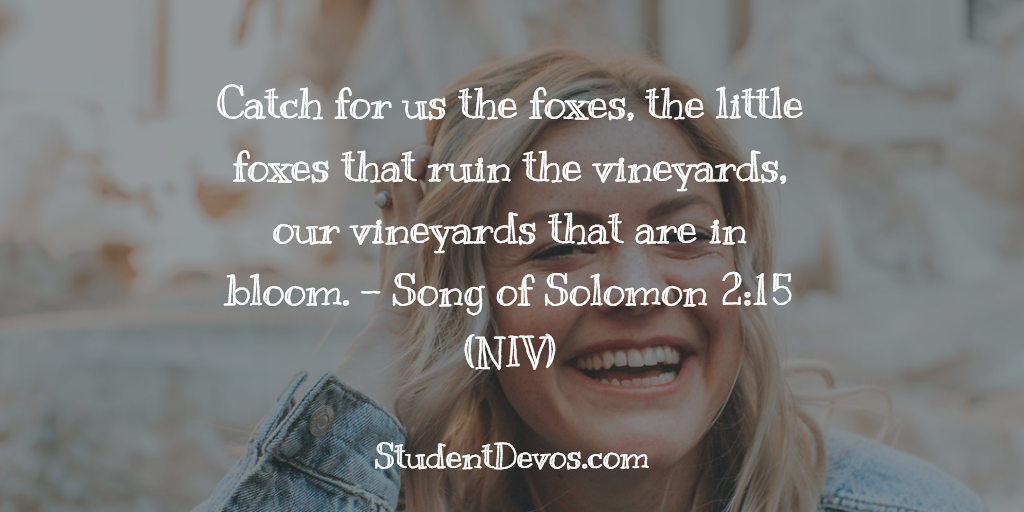 Daily Bible Verse and Devotion – Song of Solomon 2:15