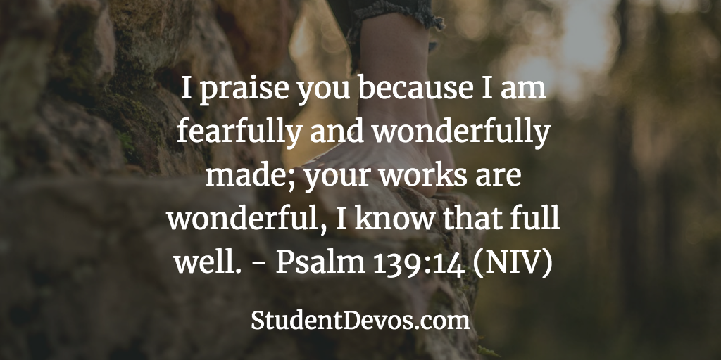 Daily Bible Verse and Devotion – Psalm 139:14