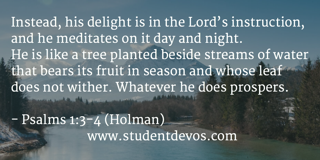 Daily Bible Verse and Devotion – Psalm 1:3-4