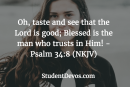 Daily Bible Verse and Devotion – Psalm 34:8