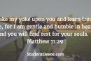 Daily Bible Verse and Devotion – Matthew 11:29